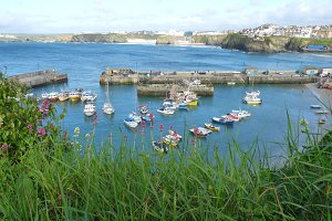 Boats in Newquay Harbour