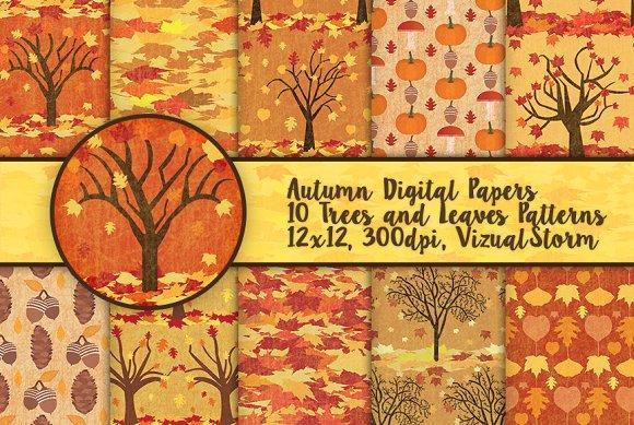 Fall Foliage Autumn Patterns