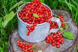 Red currant in a metal mug on the street