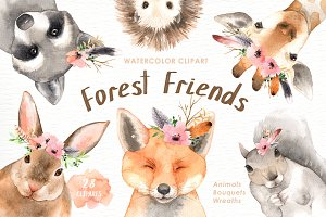 Forest Friends Watercolor Clip Art