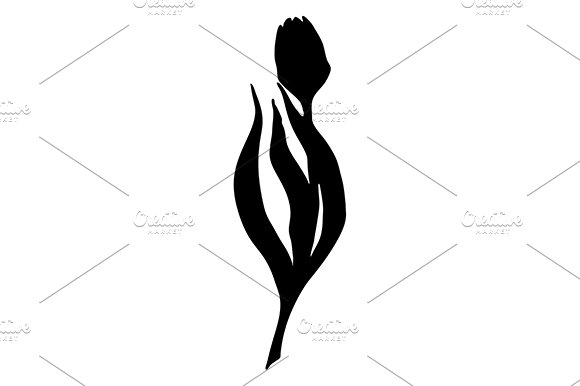 Black Tulip Flower Line Art Vector