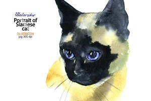Watercolor Siamese cat