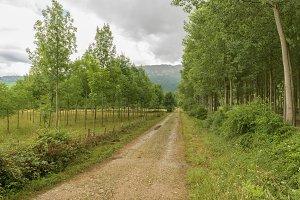 Natural landscape in Zamartze