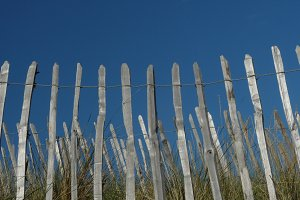 Fencing on the dunes