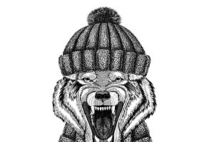 Wolf Dog Wild animal wearing knitted hat and scarf