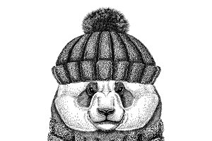 Panda bear, bamboo bear wearing knitted hat and scarf