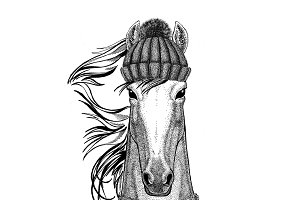 Horse, hoss, knight, steed, courser wearing knitted hat and scarf