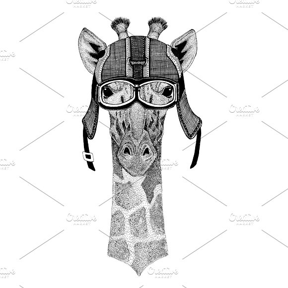 Camelopard Giraffe Wearing Motorcycle Helmet Aviator Helmet Illustration For T-shirt Patch Logo Badge Emblem Logotype Biker T-shirt With Wild Animal