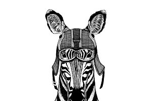 Zebra Horse wearing motorcycle helmet, aviator helmet Illustration for t-shirt, patch, logo, badge, emblem, logotype Biker t-shirt with wild animal