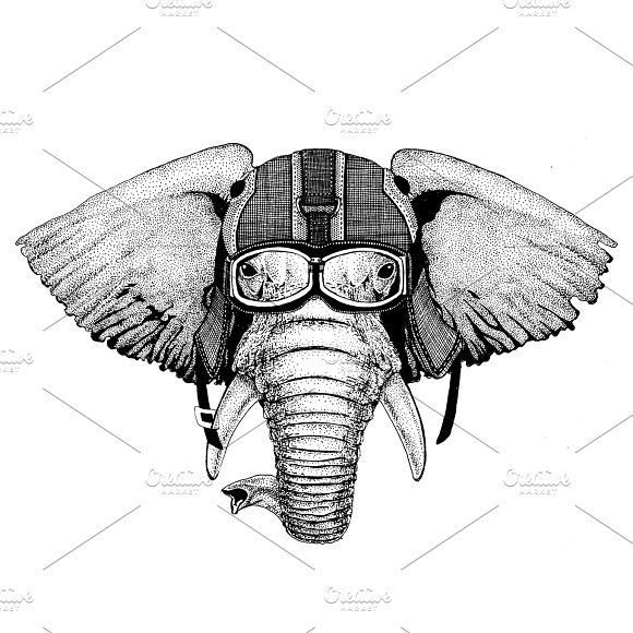 African Or Indian Elephant Wearing Motorcycle Helmet Aviator Helmet Illustration For T-shirt Patch Logo Badge Emblem Logotype Biker T-shirt With Wild Animal
