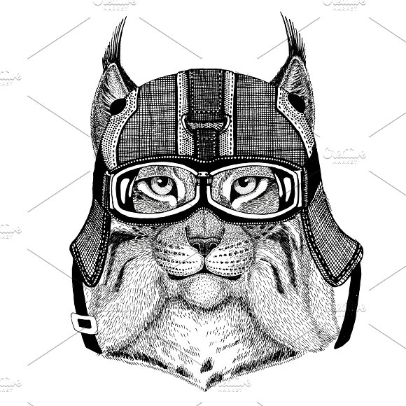 Wild Cat Lynx Bobcat Trot Wearing Motorcycle Helmet Aviator Helmet Illustration For T-shirt Patch Logo Badge Emblem Logotype Biker T-shirt With Wild Animal