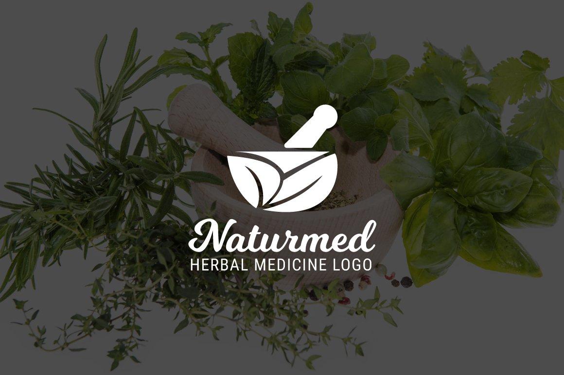 Naturmed : Herbal Medicine Logo ~ Logo Templates ~ Creative Market