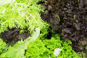 Lettuce salad in a shop