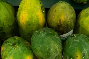 Green fresh Papaya in the local organic market of tropical Bali island, Indonesia. Asia. Papaya background.