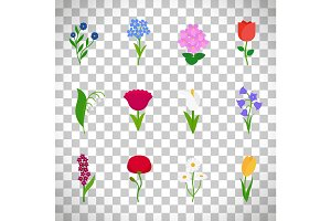 Spring flowers icons on transparent background