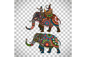 Indian elephant transparent background