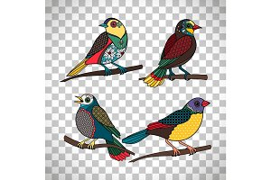 Colored birds with floral patterns