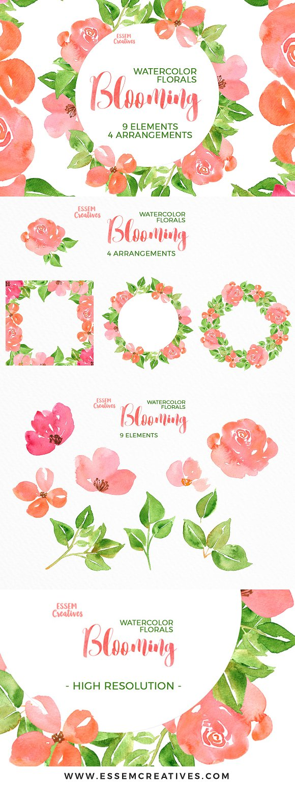 Watercolor flowers png clipart illustrations on creative market - Watercolor Flowers Spring Peonies Illustrations