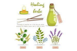 Healing Herbs in Essential Oil Promotion Poster