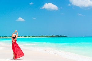 Young beautiful woman on tropical seashore. Back view of young girl in beautiful dress background the sea