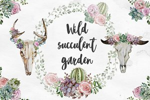 Watercolor Wild Succulent Garden Set