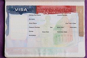 Blank american visa