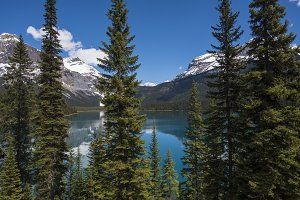 Emerald Lake British Columbia