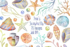 Watercolor Pastel Seashells Clipart