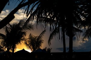 Silhouettes of palms during tropical sunset on paradise island Bali, Indonesia.