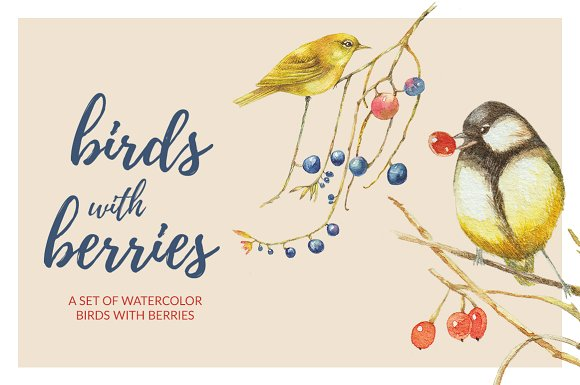 Birds Berries Watercolor Set
