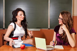 Teacher conducts lesson with student