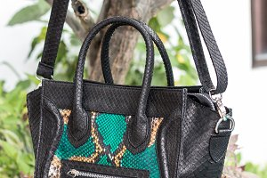 Close up of stylish female snakseskin python luxury bag outdoors. Fashionable and high style expensive female bag.