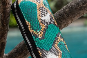 Stylish luxury snakeskin python wallet on a swimming pool background.