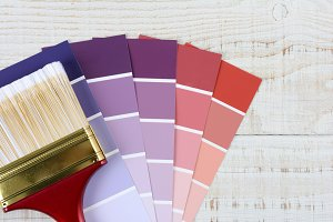 Paint Brush Color Chips