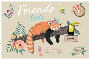 Red panda & Toucan collection