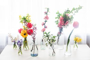 Group of different flowers on the table