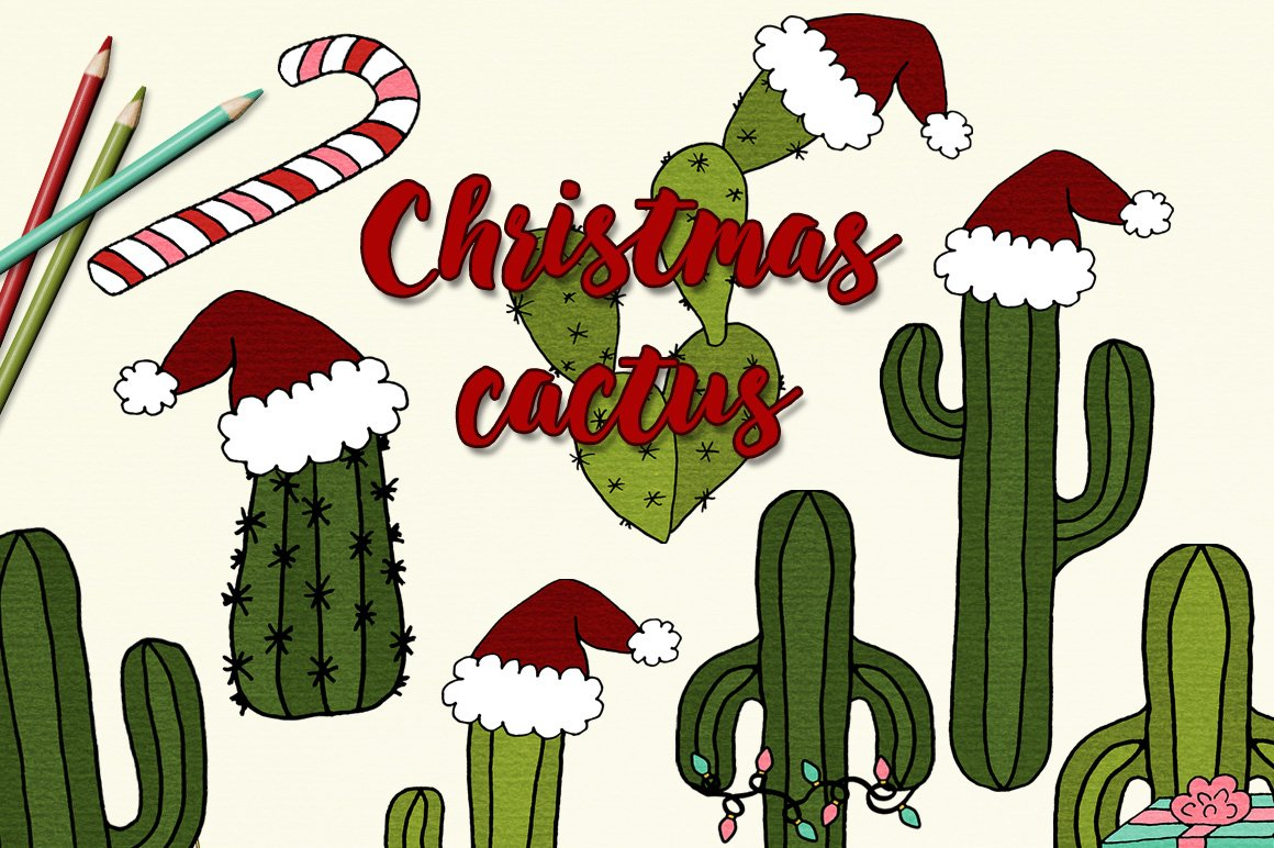 Christmas Cactus Illustrations Custom Designed Illustrations Creative Market