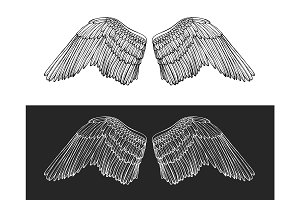 Wing Angel Hand Draw Sketch