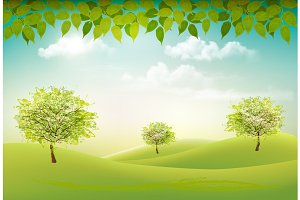 Summer nature background