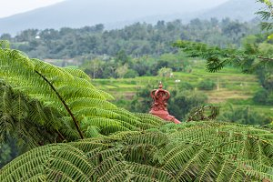 Tropical nature landscape of Bali island, Indonesia. North of Bali island.