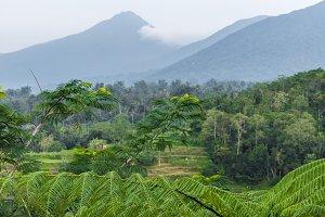 Tropical nature landscape of Bali island, Indonesia. North of Bali island.