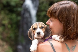 Pretty woman beautiful young happy with small dog puppy beagle. Tropical island Bali, Indonesia. Lady with beagle, waterfall on a background. Love scene.
