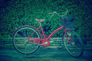Red bicycle over leaf