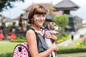 Woman beautiful young happy with poppy beagle holding a dog in her hands. Balinese temple backgorund. Indonesia, Bali.