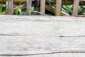 Natural organic wood background texture. Wood pattern.
