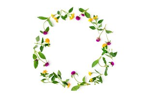 Frame Colorful bright pattern of meadow herbs and flowers on white background. Flat lay, top view.