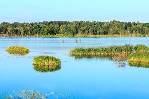 Summer lake panorama.