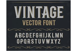 Vector vintage label font. Retro font.