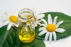 Chamomile oil, view from above