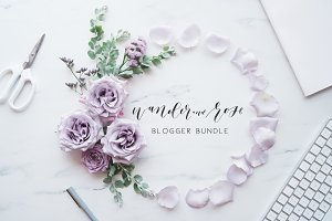 Lavender Blogger Bundle